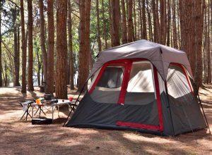stock photo camping tent with desk and chairs in pine forest