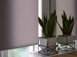 stock photo motorized roller shades automatic blinds on the window a houseplant in a modern pot stands on the